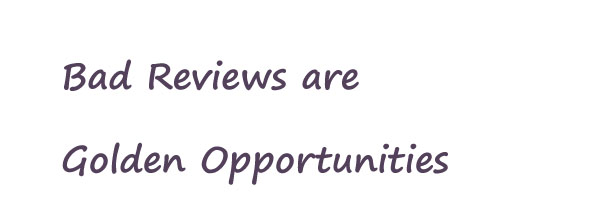 Bad Reviews Golden Opportunities
