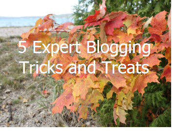 Expert Blogging Tips